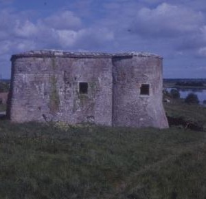 Fortifications at Banagher 1