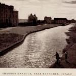 Shannon Harbour 1
