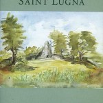 The wet hillside of Saint Lugna  1