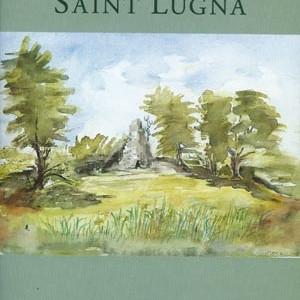 The wet hillside of Saint Lugna  1