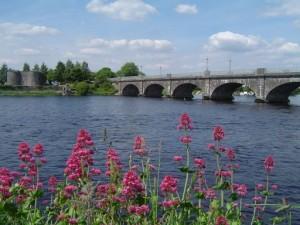 Offaly Bridge & Fort