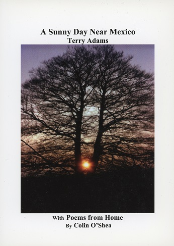 A Sunny Day Near Mexico, Terry Adams With Poems From Home By Colin O'Shea.